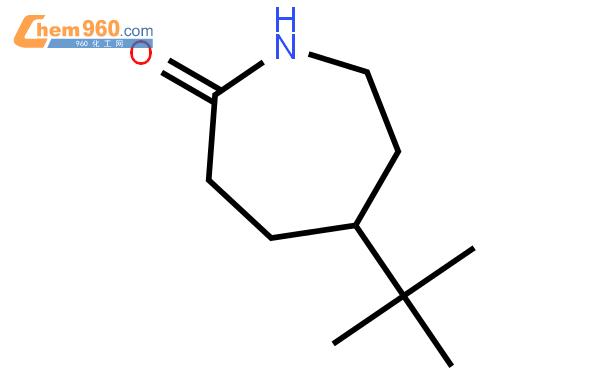 4-叔丁基己內酰胺