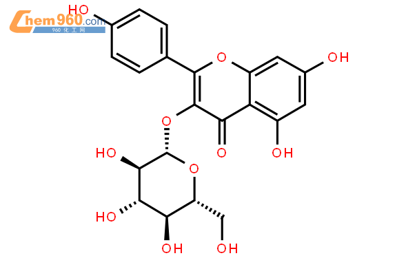 紫云英苷结构式图片|480-10-4结构式图片