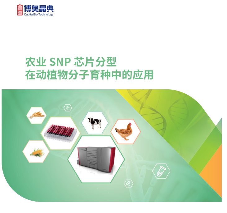 Affymetrix全基因组SNP芯片检测产品图片