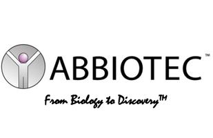 KLF15 Antibody_KLF15抗体产品图片